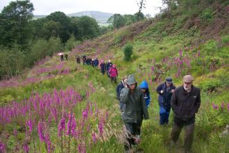 Cottage Farm walking event