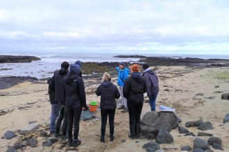 Portballintrae Intertidal survey