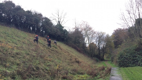 Nature Reserve Team at Milford Cutting (c) Romy EVS