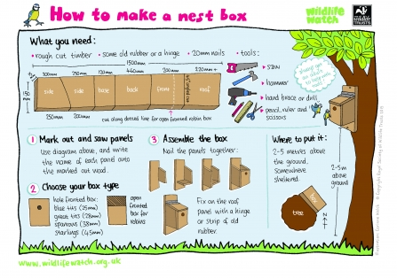 Nest box how to guide