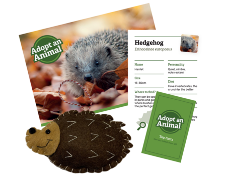 Hedgehog package sample