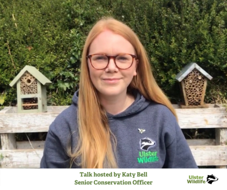 Talk Hosted by Katy Bell