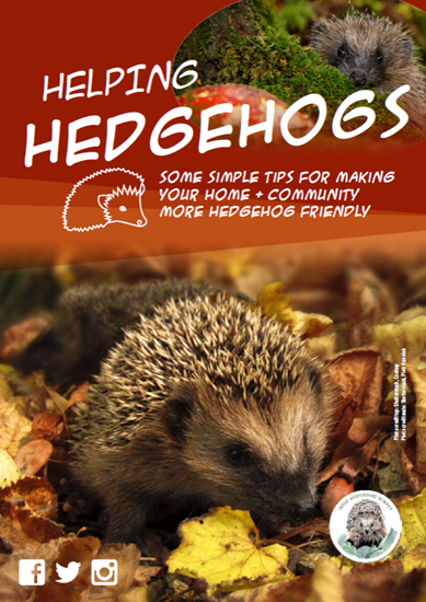 Helping hedgehogs leaflet - cover image